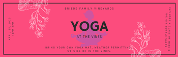 April 25 Yoga at the Vineyard